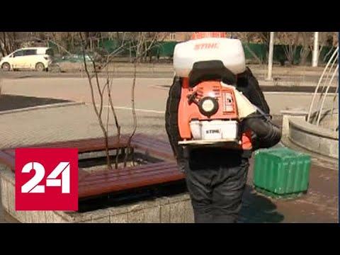 В Иркутской области начался режим самоизоляции - Россия 24