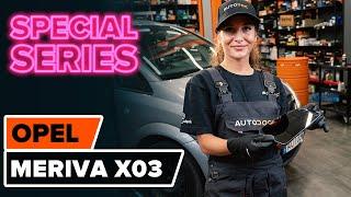How to replace Brake Drum on FIAT GRANDE PUNTO Van (199_) - video tutorial