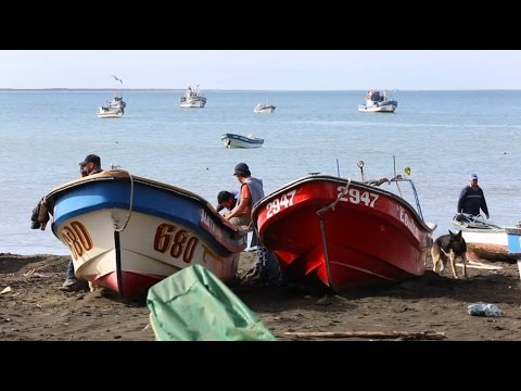 Habitantes del Pacífico Cap. 4: Isla Santa María
