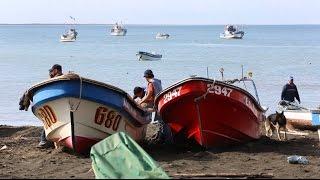 Habitantes del Pacífico - Isla Santa María