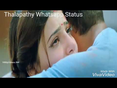 Theri Samantha Death Scene Whatsapp Status II Vijay,Samantha