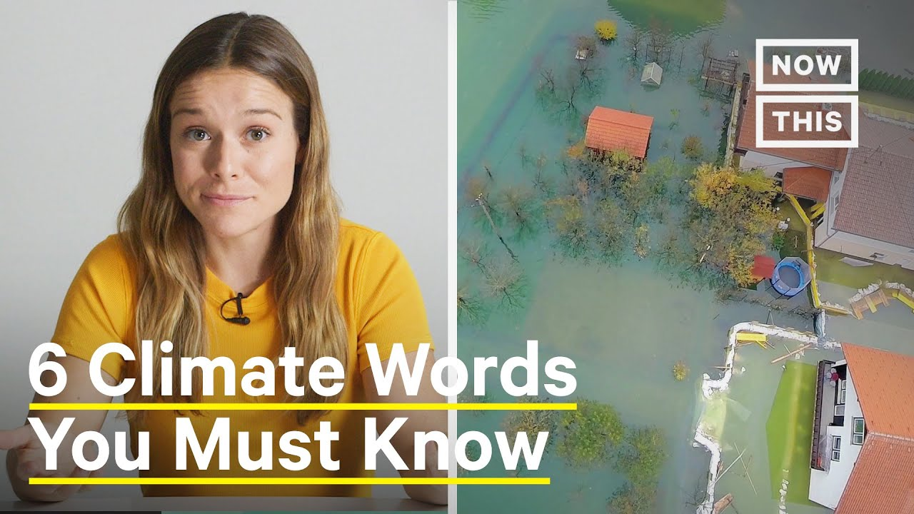 These are the Climate Crisis  Buzzwords you need to Know