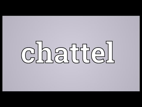 Chattel You are NOT a PERSON