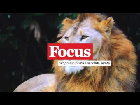 Promo FOCUS Mediaset