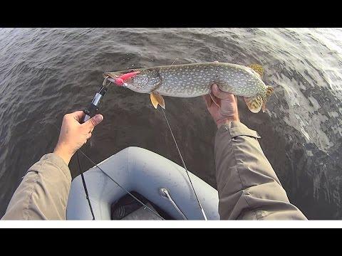 щука на поролоновую рыбку видео