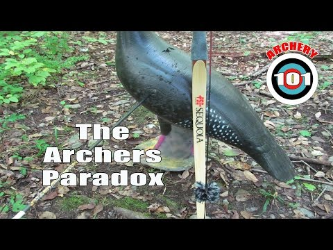 """What is """"The Archers Paradox"""""""