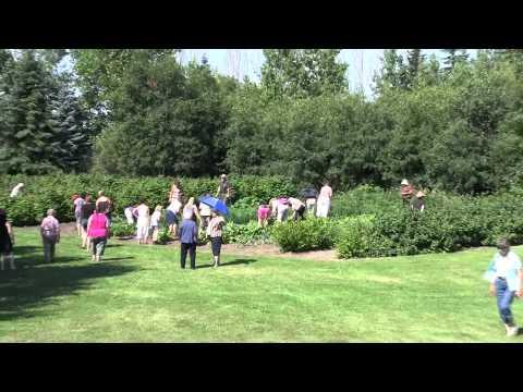 Red Deer County - Rural Beautification Program 2014