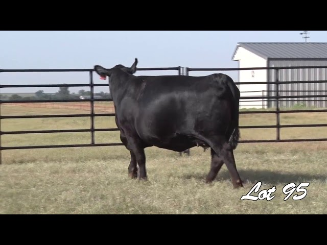 Pollard Farms Lot 95