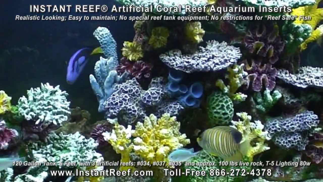 Saltwater Fish Tank Decorations In 120 Gallon Marine Fish Aquarium With Artificial Coral Reef