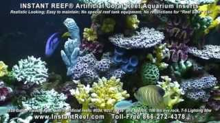 Saltwater Fish Tank Decorations In 120 Gallon Marine Fish Aquarium With Artificial Coral Reef Decors