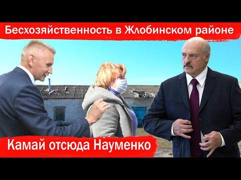 Бесхозяйственность в Жлобинском районе. Камай отсюда Науменко