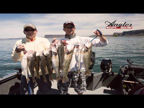 Banks Lake Walleye