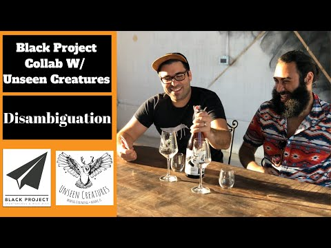 Beer Review: Disambiguation- Black Project x Unseen Creature