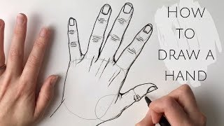 Beginners - how to draw a hand