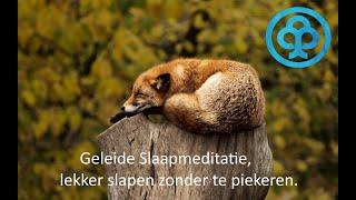 Geleide slaapmeditatie Lekker diep slapen zonder te piekeren of wakker te liggen