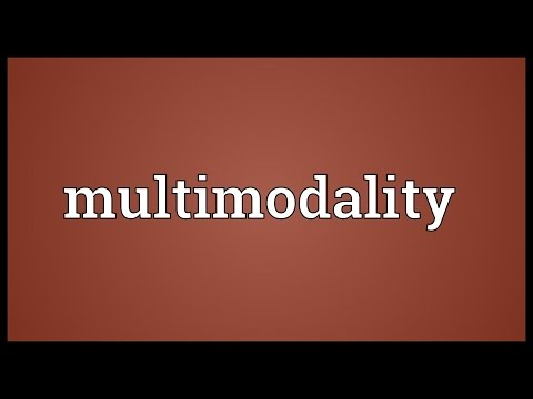 Multimodality Meaning