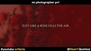 MR PHOTOGR...