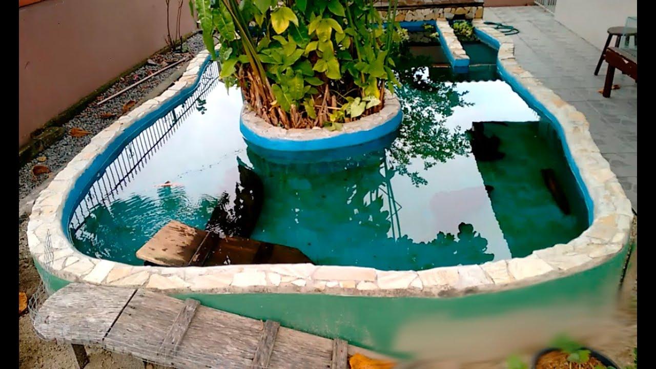 Reforma do lago ornamental de alvenaria carpa koi for Carpas para piscinas