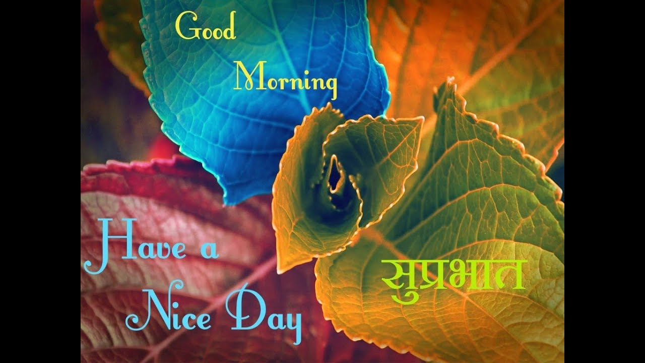 Latest Good Morning Sms Wishes Greetings Messages In Hindi For