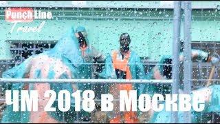 Африканские болельщики нашли работу в Москве. Чемпионат мира 2018