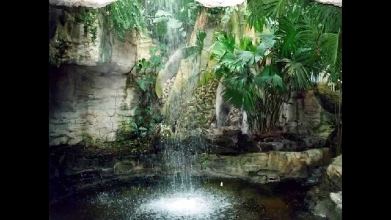 Paisajes flores y jardines part 1 3 youtube for Imagenes de jardines exoticos