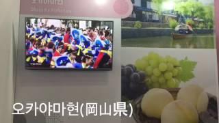 2017 하나투어 여행박람회(일본관)/2017ハナツアー旅行博覧会