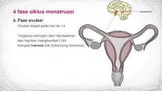IPA SMP kelas 9: Proses dan Siklus Menstruasi