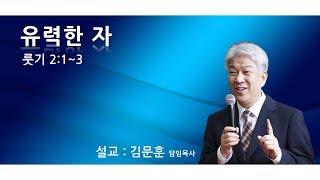 20191020 포도원교회 김문훈목사 룻기 2장 1절~…