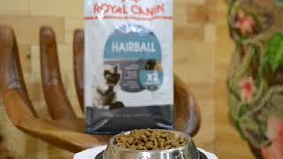Royal Canin Hairball 1кг на вес корм для кошек с эффектом выведения шерсти