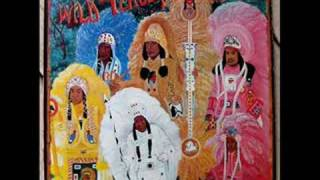 The Wild Tchoupitoulas -Hey Hey (Indians Comin