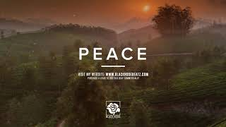 "House Type Beat x Deep House ""Peace"" | Martin Garrix Type Beat 2019 | Calvin Harris Type Beat 2019"