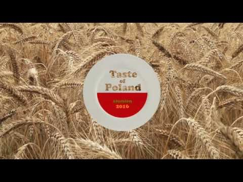 Taste of Poland, Polish Irish Festival 2016
