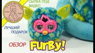 Обзор Furby Витрина интерактивных игрушек