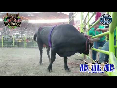 ii20 Destructores En Pico Rivera!!La Despedida Gira USA 2018,Pura Garantía GO,Guillermo Ocampo