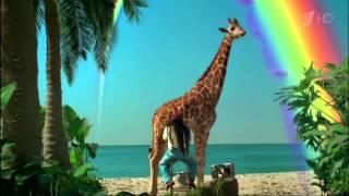 Реклама Skittles (ДОТЯНИСЬ ДО РАДУГИ!)(Жевательные конфеты Skittles ® с разноцветной глазурью вот уже Несколько десятилетий позволяют своим поклонни..., 2015-10-25T11:26:45.000Z)