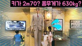 Believe or Not Museum in Jeju Island