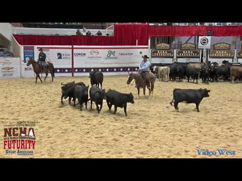 2018 NCHA Futurity LMT Open Finals