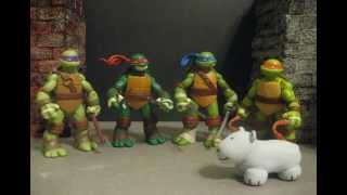 TMNT Shell Raising Showdown Contest Entry