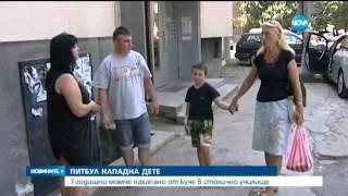 7 годишното дете, нахапано от питбул: Шиха ми крака - Новините на Нова (08.07.2015)