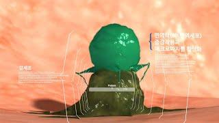 키쿠키토산 [의료기술 홍보영상]