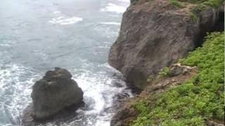 "Video Ryan Starr ""Surviving Paradise"" 13th day of 16 backpacking of Kauai Hawaii download MP3, 3GP, MP4, WEBM, AVI, FLV November 2017"