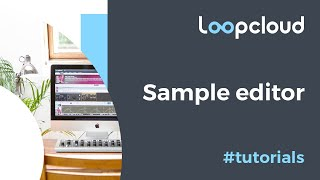 Loop Editor - Loopcloud 5 Tutorial