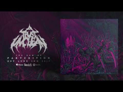 A TRUST UNCLEAN - Dominion Over Bone (Official HD Audio - Basick Records)