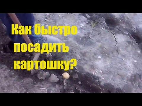 видео: Ручная самодельная чудо-сажалка для картофеля.