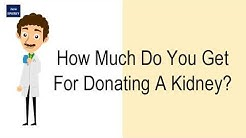 hqdefault - How Much Do You Get Paid To Donate A Kidney
