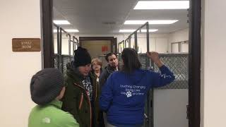 Humane Society of Midland County takes in five rescued dogs from South Korea