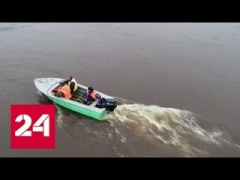 Уровень рек в Амурской области приближается к критической отметке - Россия 24
