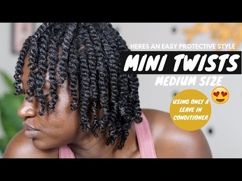 mini-twists-on-natural-hair-|-kiss-colors-argan-and-macadamia-natural-hair-care-line