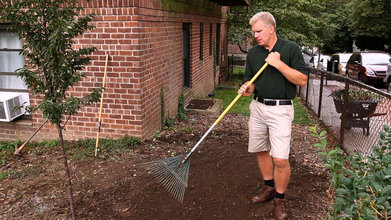 How To Prepare Soil For Gr Planting Lawn Garden Care You
