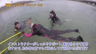 【那覇シーサイドパークシュノーケル】 https://www.cerulean-blue.co.j...